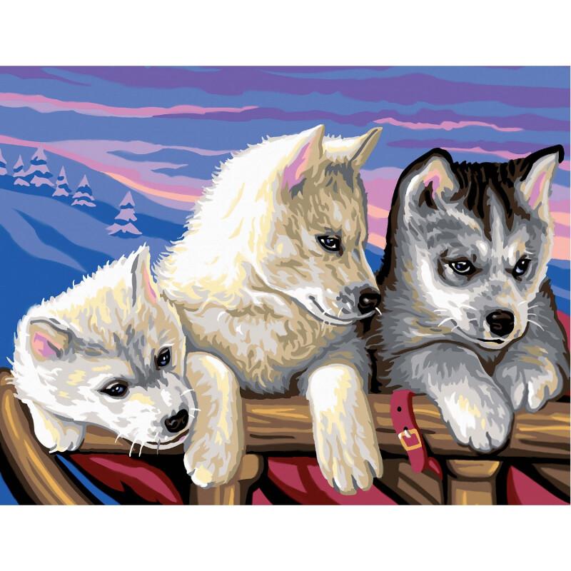 Prächtiges Malen nach Zahlen Senior - Huskies 395x32x2cm