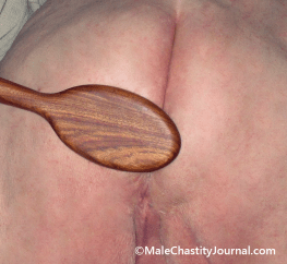 spahing spoon on Lion's butt