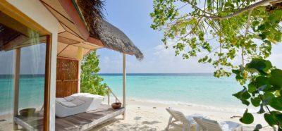 l Safari Island Resort | Erfahrungen, Preise & Deals 2019