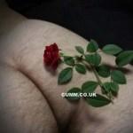 RoseBuddy Anal Massage London