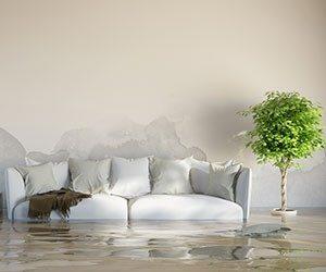 Professionelle Behebung von Wasserschäden ohne Folgewirkungen