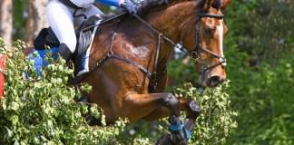 HorsePro Elite