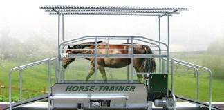 Horse-trainer
