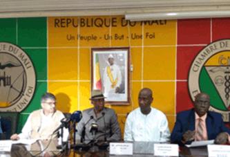 Mali-Inde: Un partenariat au profit du monde des affaires