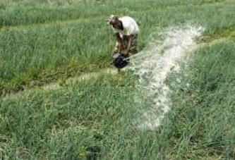Salon international de l'agriculture de Paris (SIA 2019) : Les avantages de l'Office du Niger expliqués aux investisseurs