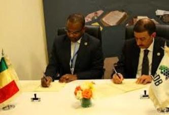 44ème réunion des assemblées de la BID : Une participation très fructueuse du ministre Boubou Cissé