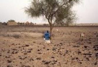 Adaptation aux effets des changements climatiques : Les documents stratégiques du Reso Climat partagés