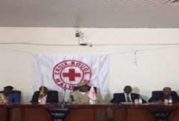 Action humanitaire : les actions de la Croix-Rouge Malienne en vedette