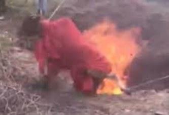 Torture d'animaux pour des faits de sacrifices : Quid de la loi?