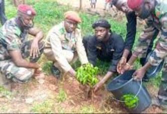 Reboisement : 400 pieds d'arbres plantés par l'Association des Amis de la Nature