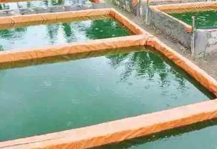 Cara Menjaga Kualitas Air Kolam Lele Terpal