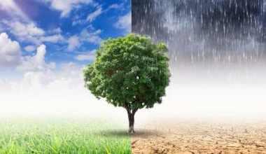 Faktor Penyebab Perubahan Iklim