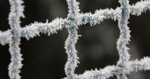 frost-1883729_1920-crop frost-1883729_1920-crop