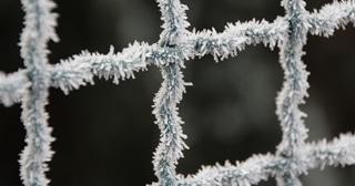frost-1883729_1920-crop Inicio