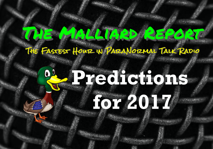 Predictions for 2017