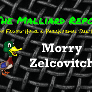 Morry Zelcovitch