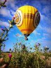 Ballonfahrten mit Mallorca Balloons