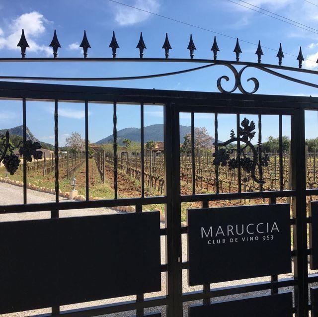 Bodega Maruccia Mallorca