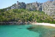 Bürgermeister von Pollença will den Zugang zur Cala Bóquer, Cala Figuera und Cala Murta beschränken