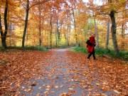 Sinkende Temperaturen und Niederschläge mit typischem Herbstwetter