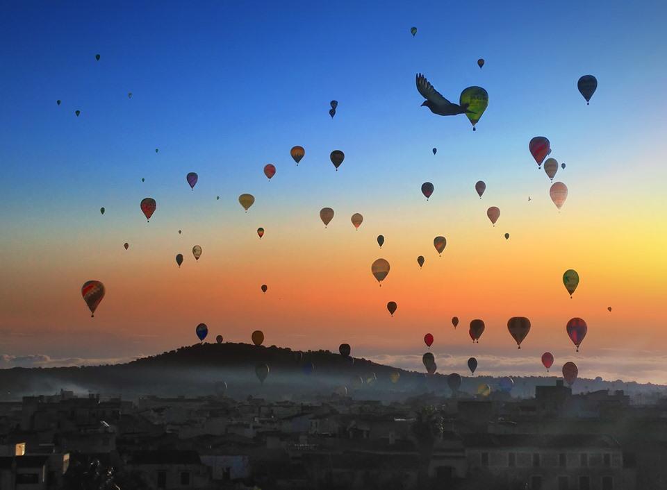 """95 """"globos aerostáticos"""" an Mallorcas Himmel"""