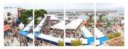 """""""Mostra de la Llampuga"""": Mehrere Tausend Besucher werden erwartet"""
