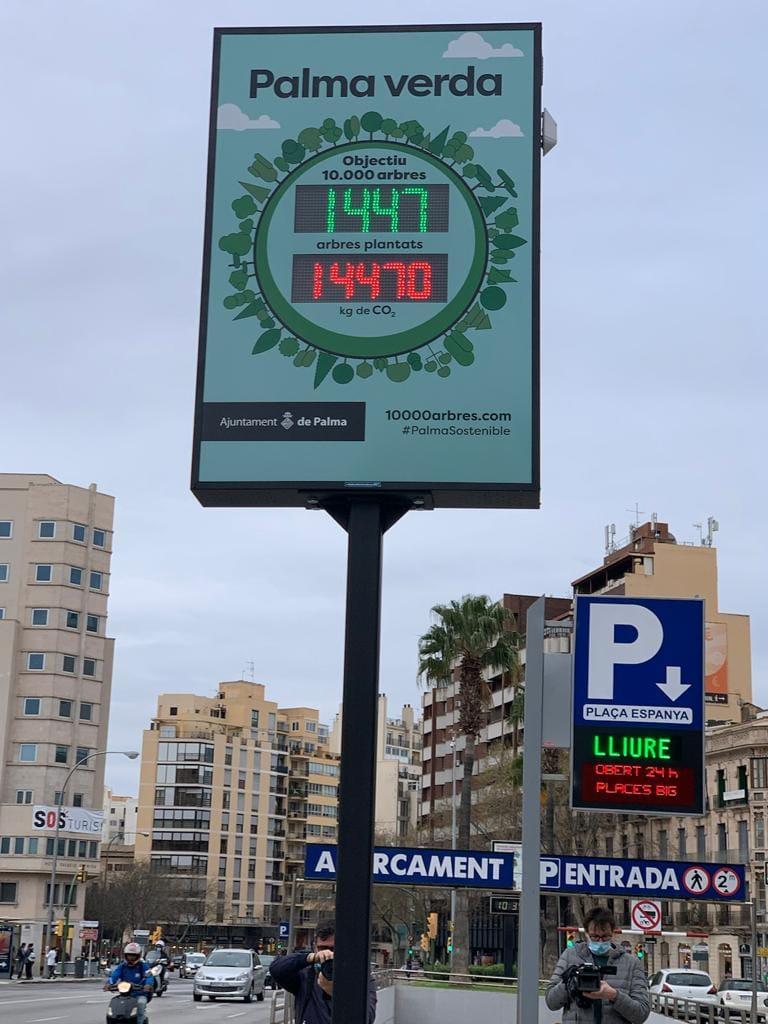 10.000 arbres - Palma verde