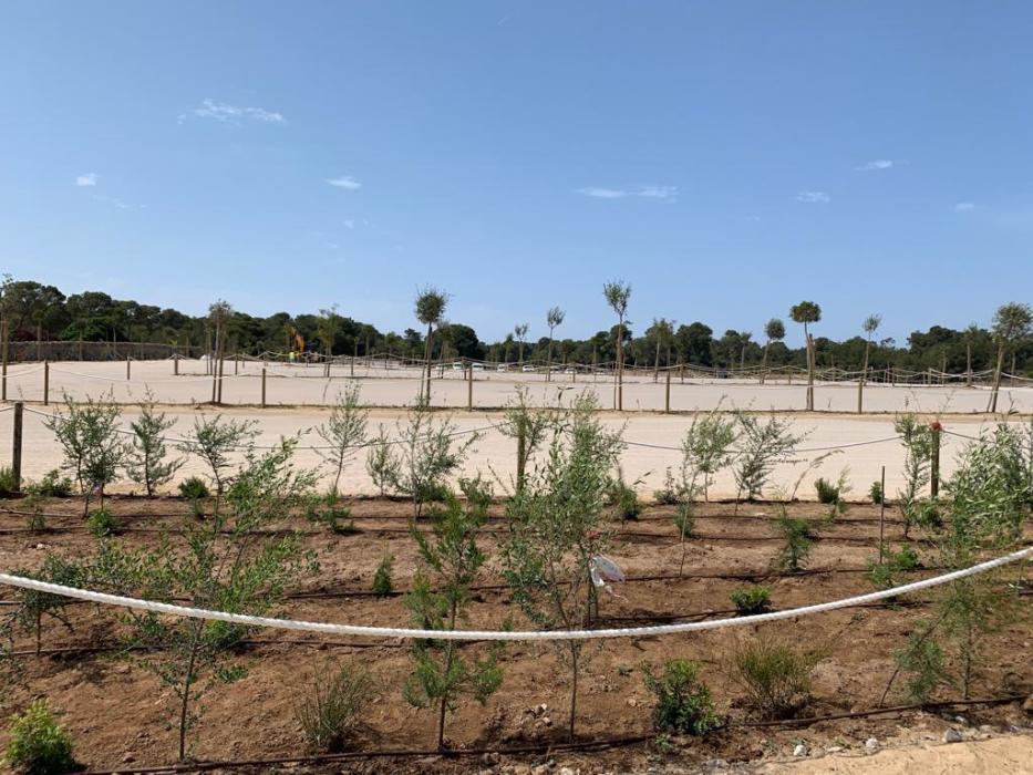 Neuer Parkplatz am Es Trenc-Strand