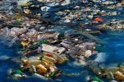 Cort entfernt Tonnen von Müll aus dem Wildbach Sa Riera