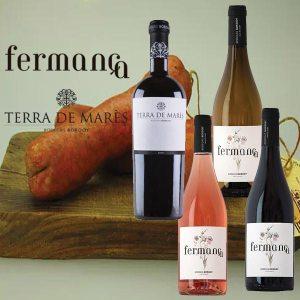 "Gourmet-Paket ""Vino y Sobrassada"""