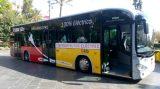 TIB stockt Bus-Flotte mächtig auf