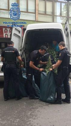 Der Geruch verriet einen Van voller Marihuana in Palma