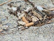 """Mallorca jetzt schon mit drei """"rauchfreien"""" Stränden"""