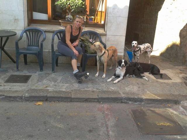 Brunni aus Soller rettet Hunde