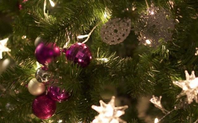 Humanidad Baleares Weihnachtsspende