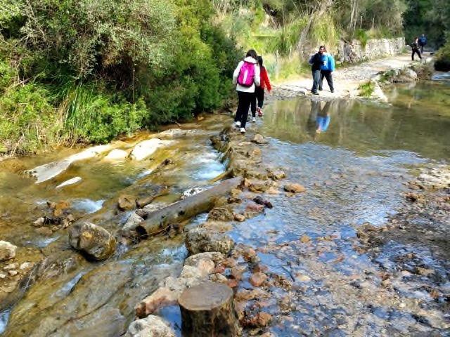 Die Wanderung zur Avenc de Son Pou