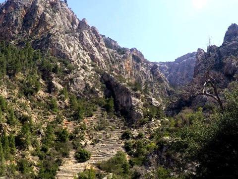 Barranc de Biniaraix hinauf zum Coll de l'Ofre.