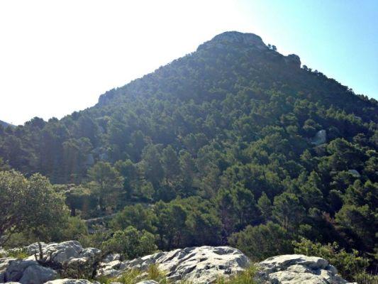 Halbe Strecke geschafft beim Wandern auf Mallorca