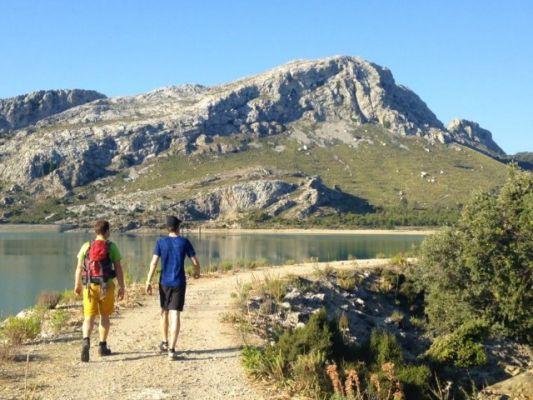 Wandern auf Mallorca: Puig de L Ofre