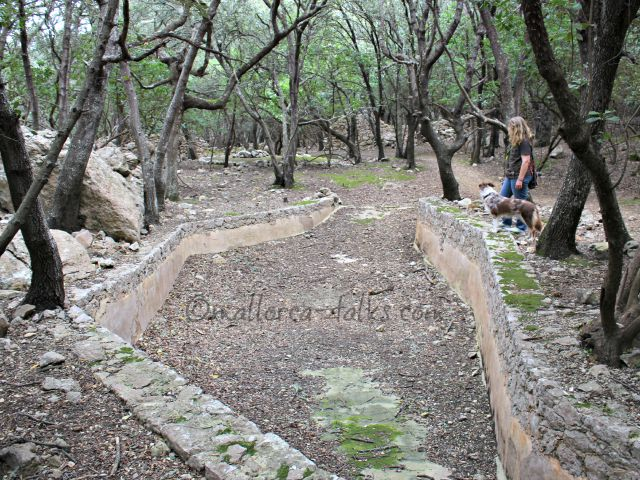 Das alte Wasserbecken mitten im Wald