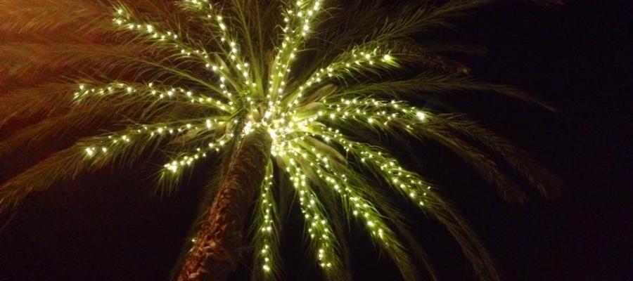 Weihnachten auf Mallorca - Foto Kerstin Hering