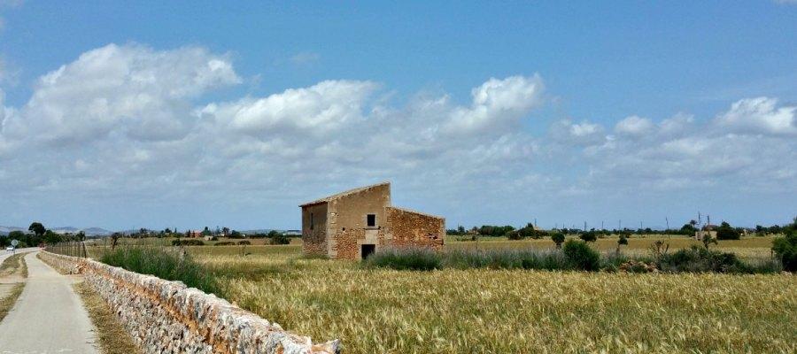 Mallorca mit dem Rad erleben