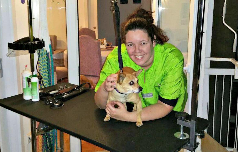 Mallorca Dog Spa Stefanie Funken