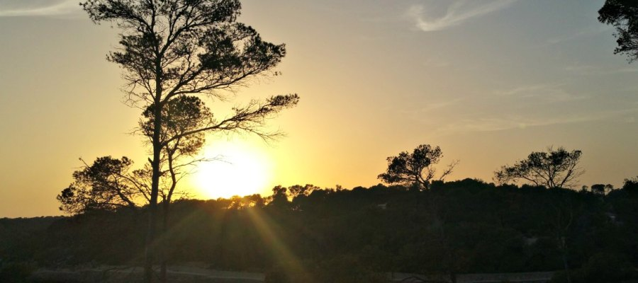 Achtsamkeitswanderung entlang der Küste Mallorcas