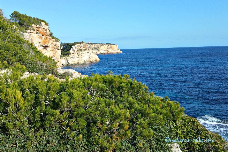 Winter-Spaziergang auf Mallorca