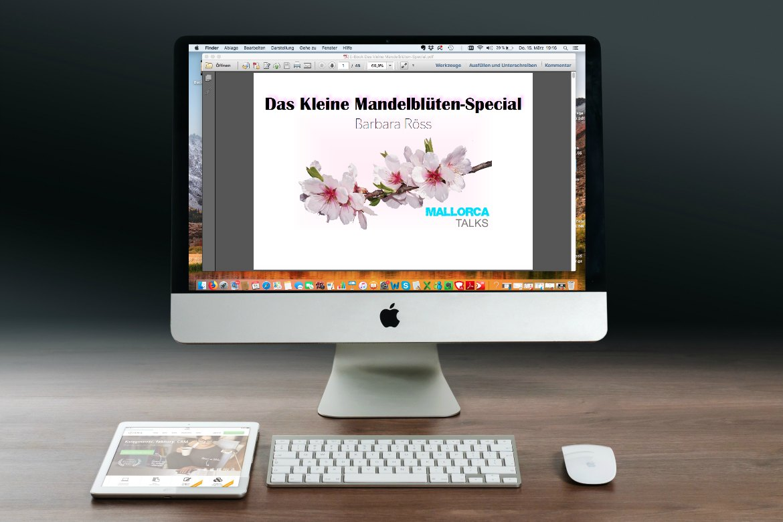 Das kleine Mandelblüten-Special