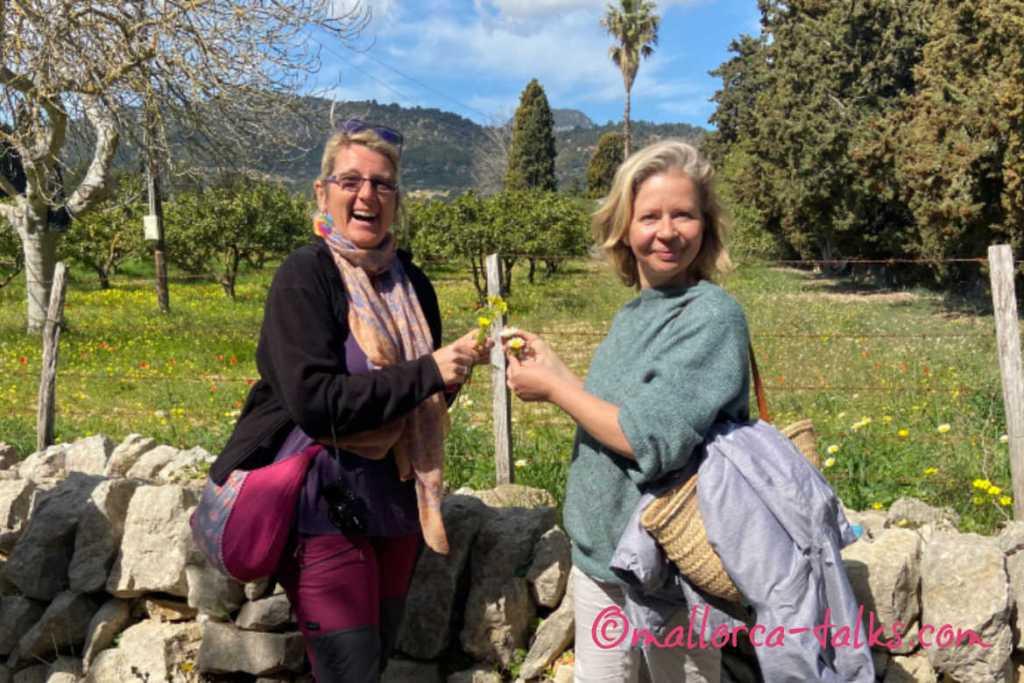 Tour der essbaren Pflanzen auf Mallorca