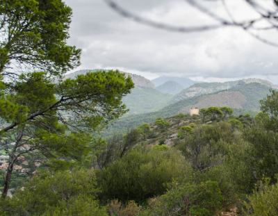 Wandern: Piratenturm am Cap de Andritxol