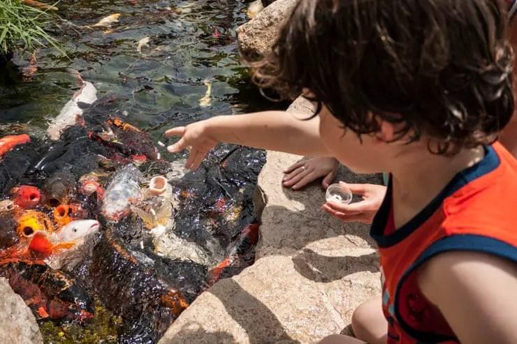 Palma Aquarium - Palma de Mallorca