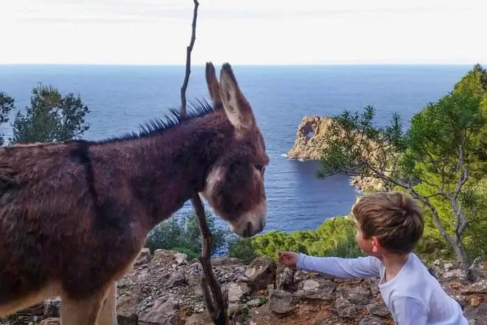 Sa Foradada: Wandern mit Kindern auf Mallorca